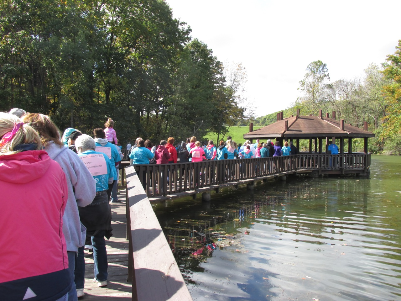 Breast Cancer Walk - October 2014
